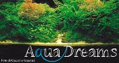 AquaDreams